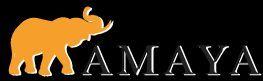 Amaya Express.jpg